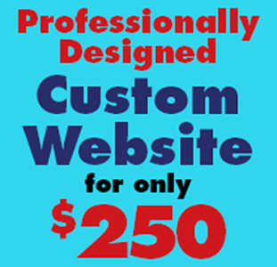 Custom Web Design $250.00